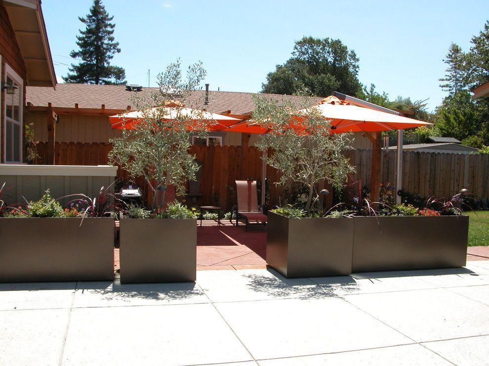 Foto: Reprodução / Avant Garden </a>