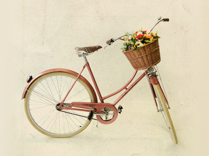"Bicicleta Isis Flamingo por R$ 1.269 na <a href=""https://echovintage.com.br/produto/bicicleta-isis-flamingo-feminina/"" target=""_blank"">Echo Vintage</a>"