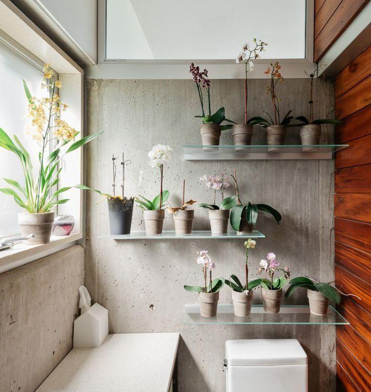 Foto: Reprodução / M+A Architecture Studio