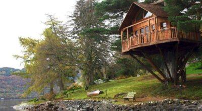 Sonho ou realidade? Confira 40 casas na árvore apaixonantes