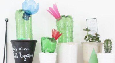 Artesanato em casa: como fazer um vaso de cactos com garrafa pet
