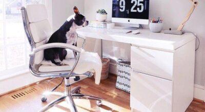 44 ideias e modelos de cadeira de escritório para usar em seu home office