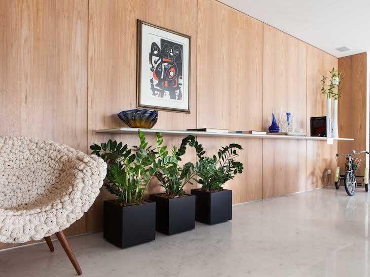 100 10 plantas para ambientes fechados 10 plantas que purificam o ar da sua casa - Plantas interiores ...