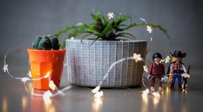 Vaso de concreto: aprenda a confeccionar a peça-desejo do momento