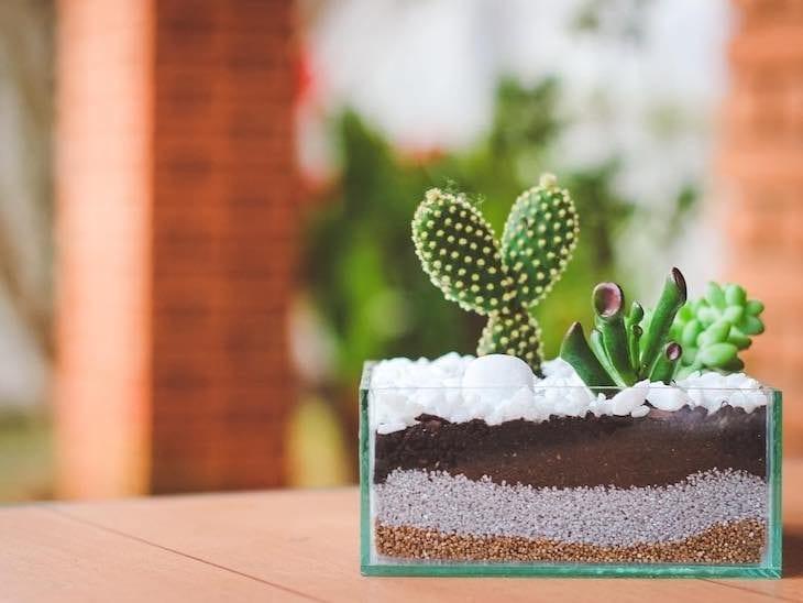 Terr rio como fazer e 30 ideias com fotos para te inspirar for Como criar caracoles de jardin