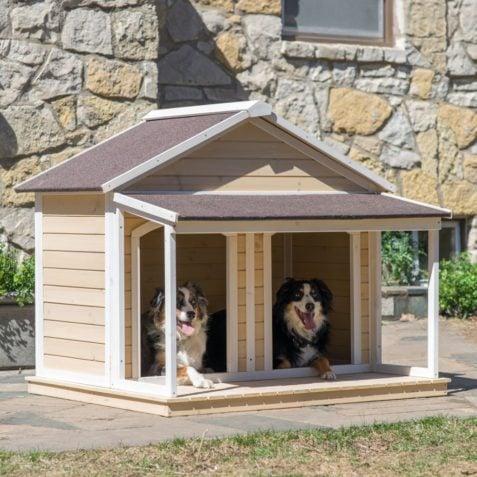 Casinhas De Cachorro De Madeira 40 Modelos Legais E Como
