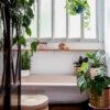 Plantas para banheiro: 36 espécies que trazem mais frescor ao ambiente