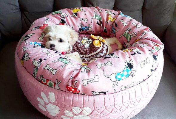 45 ideias de cama para cachorro e tutoriais para você fazer a sua em casa