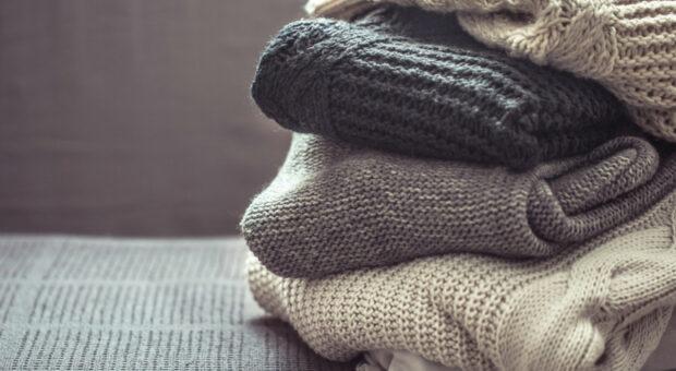 8 métodos simples e eficientes para acabar de vez com a traça em sua casa