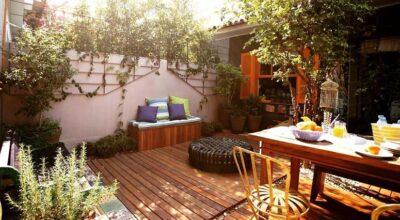 Plantas para jardim: espécies e ideias para planejar um espaço verde