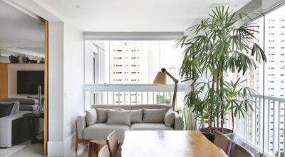 Ráfia: 25 ideias de decoração e dicas para cultivar essa palmeira