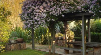 Paisagismo: dicas essenciais e 15 projetos incríveis de jardins