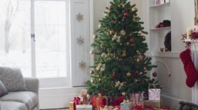 Pinheiro de Natal: 60 ideias apaixonantes para você se inspirar