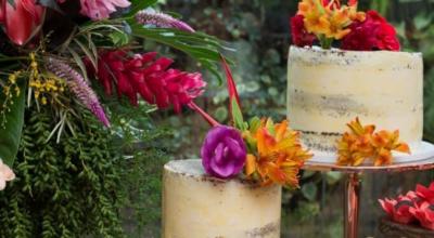 Flores tropicais: conheça e saiba como cuidar de 10 belezas exóticas que vão deixar seu ambiente mais alegre