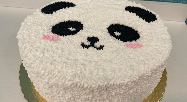 Bolo panda: 70 inspirações para deixar qualquer festa mais fofa
