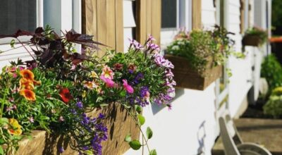 Floreira de madeira: 60 modelos cheios de charme para decorar a casa