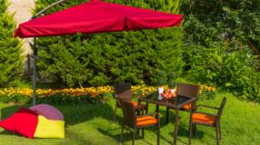 Tipos de grama: conheça o melhor para montar o seu jardim