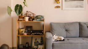 Fotografias e memórias decoram com simplicidade um apê