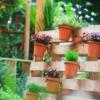 70 ideias de jardim vertical de pallet para decorar gastando pouco