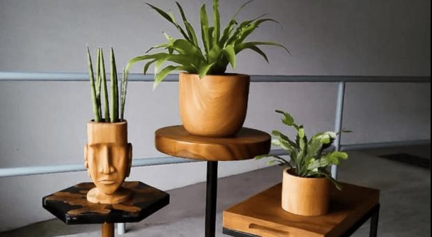 30 modelos de cachepot de madeira para destacar suas plantas