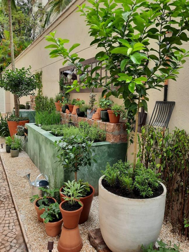 10 projetos de horta em casa para você cultivar a sua
