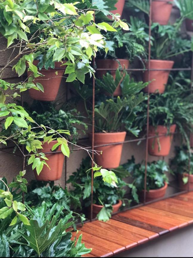 12 ideias criativas de suporte para plantas